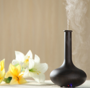 Aromatherapy diffuser next to flowers.