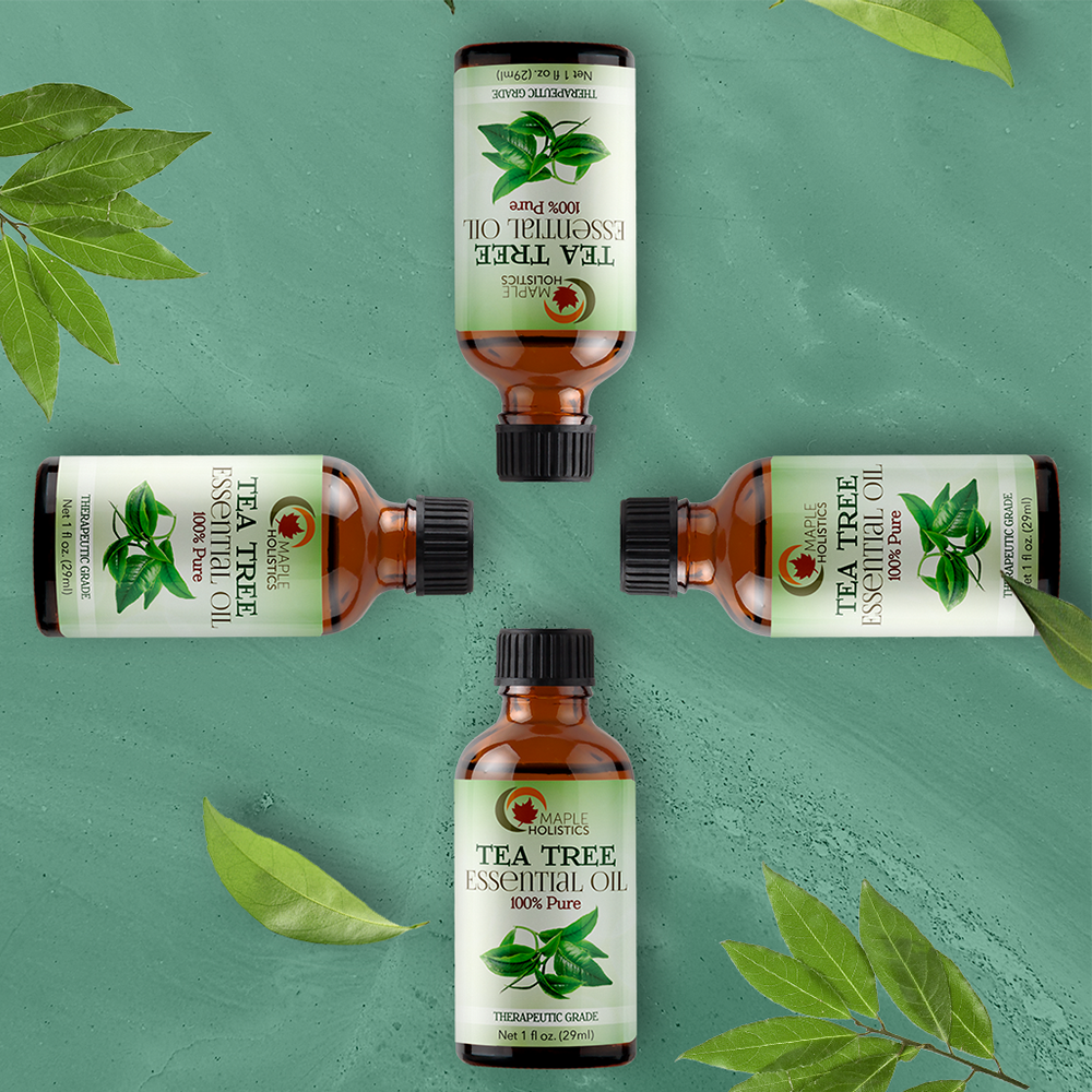 Four bottles of tea tree essential oil with some greenery.