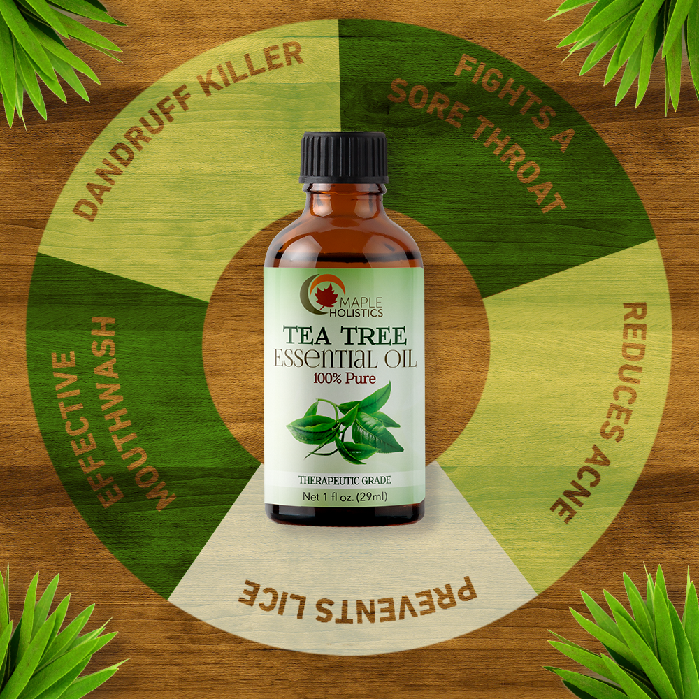 Tea tree essential oil infographic.