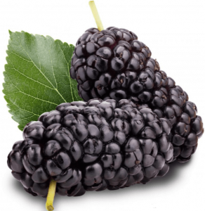 Black mulberries.