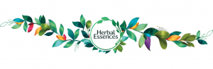 Herbal Essences logo with leaves