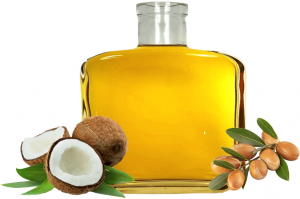 Argan plant and coconuts with bottle of oil.