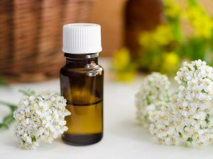 Yarrow flowers and a vial of yarrow essential oil.