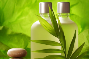 Two bottles of green liquid with plant.