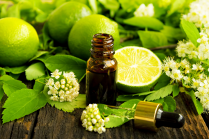 Bottle with essential oil surrounded by limes.