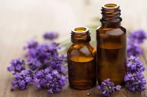 Two small brown bottles of liquid surrounded by lavender.