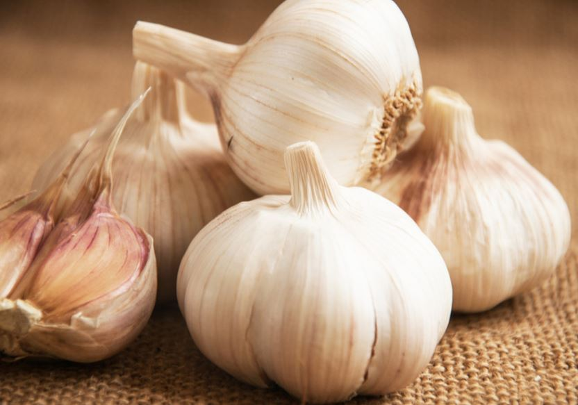 Piles of raw garlic.
