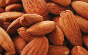 Close up of pile of almonds.