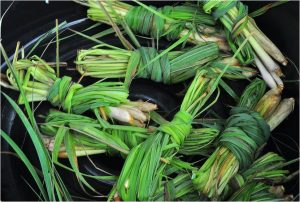 Lemongrass leaves in bunches.