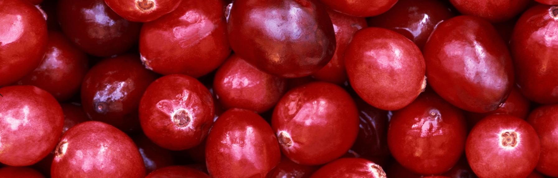 Pile of cranberries.