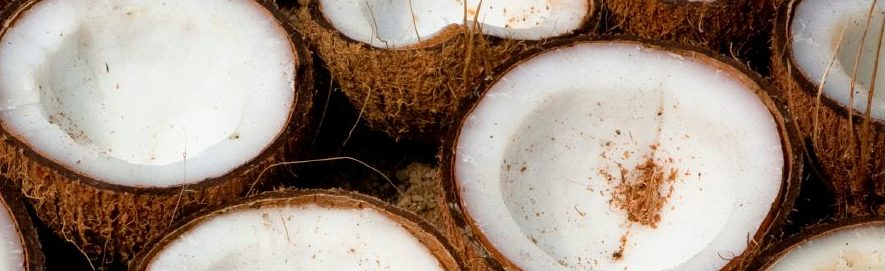 Coconuts cut in half.