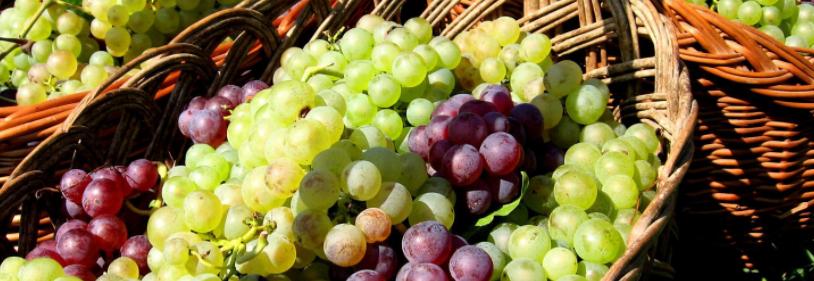 Punnet of grapes.
