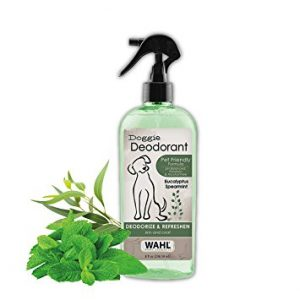 Deodorant dog spray next to leaves.
