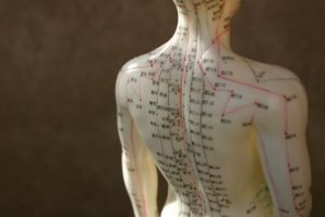 Acupuncture dummy.