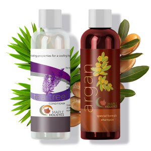 A bottle of Maple Holistics argan shampoo and a bottle of tea tree conditioner.