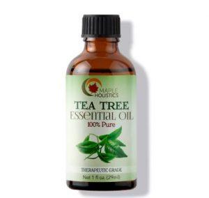 Bottle of Maple Holistics tea tree essential oil.