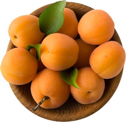 Apricots in a bowl.