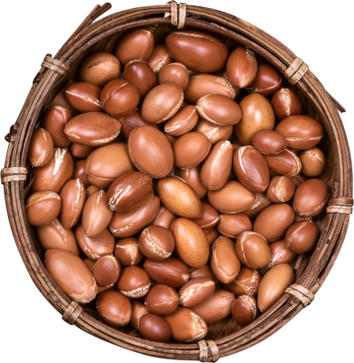 Argan nuts in a bowl.